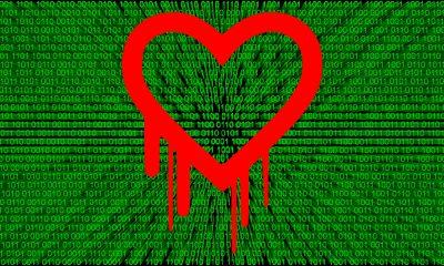 heartbleed virus